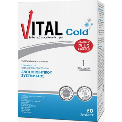 product_main_large_20170112100255_vital_cold_20_kapsoules